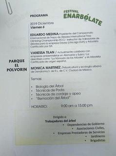 Programa del Festival Enarbólate
