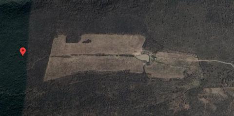 Imagen de satélite de la zona en donde se produce la deforestación de acuerdo con la denuncia ciudadana.